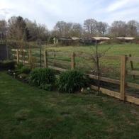 paddock fence 2